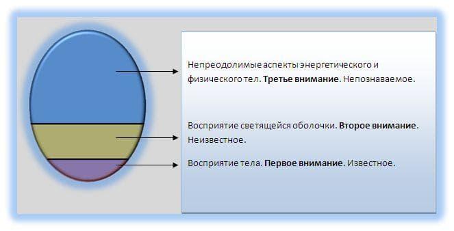 Древо Сфирот и позиции точки сборки