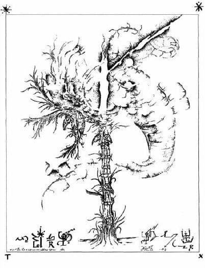 Книга Саббата ZA-I-ADEN: часть первая