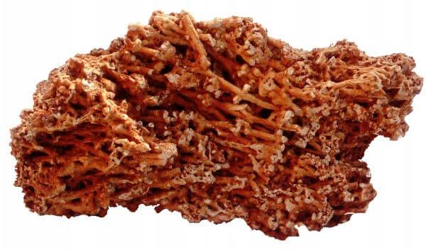 Магия камней: коралл