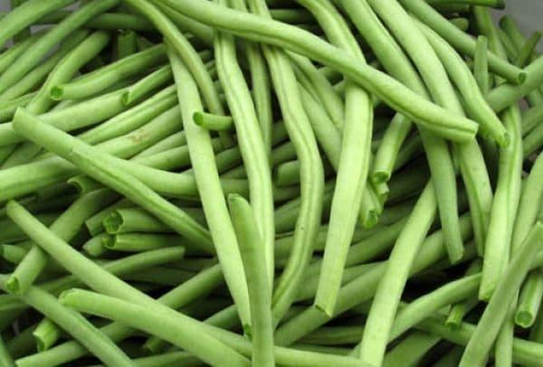 Народное лечение травами: фасоль