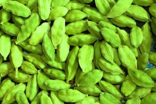 Народное лечение травами: кардамон