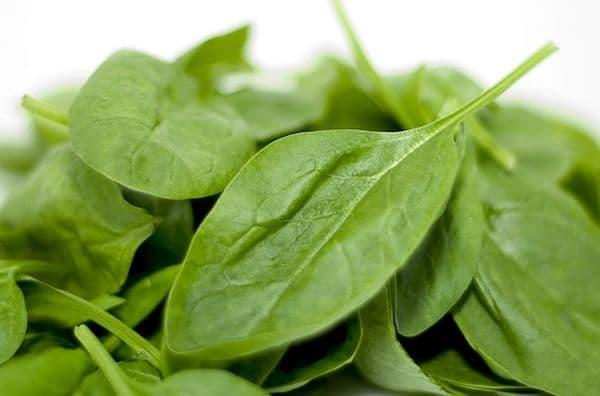 Народное лечение травами: шпинат